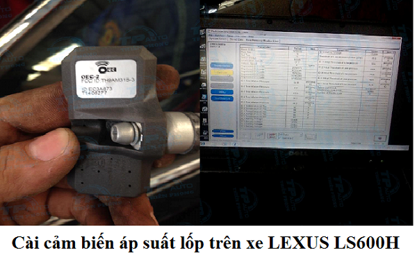 thiet-bi-cam-bien-ap-suat-lop-toyota-lexus-hang-chinh-hang-11
